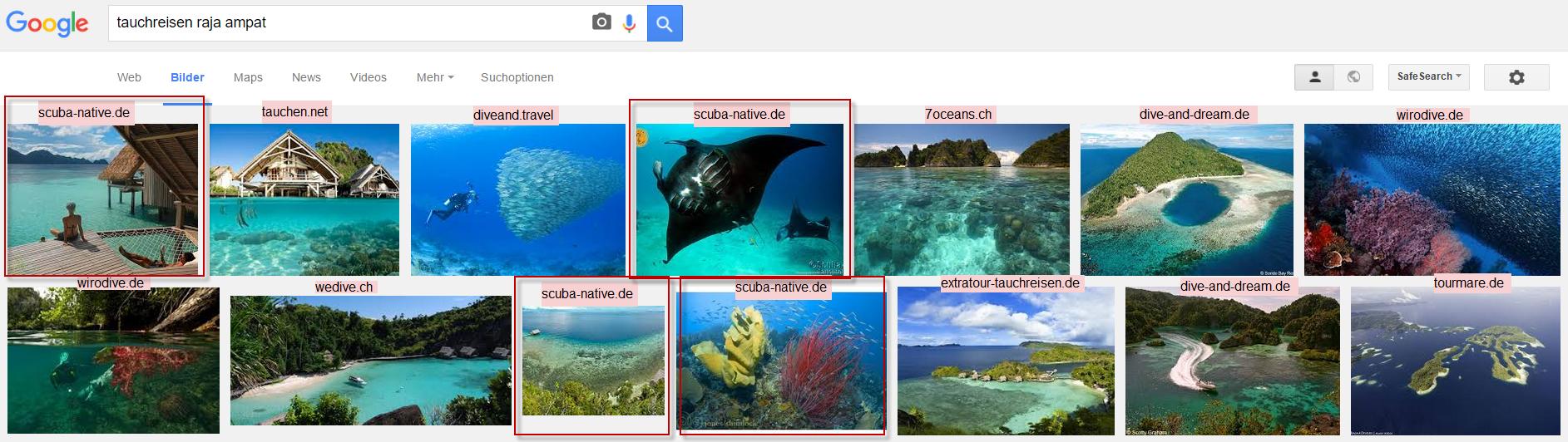 Suchergebnisse Google Bildersuche