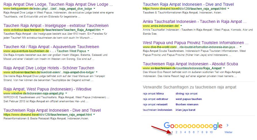 Suchergebnisse Google SERPs